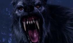 Как вызвать Чёрного Пса