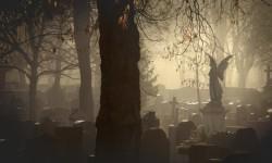 Дом на кладбище животных