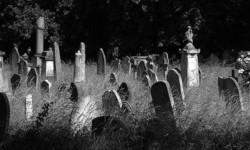 Исчезающее кладбище