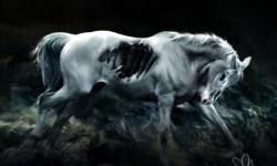 На конях