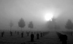 Была я на твоём кладбище
