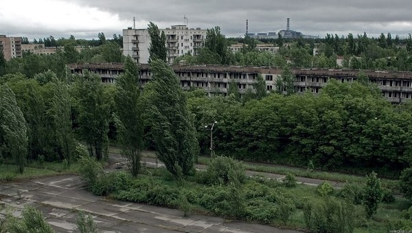 О жизни в смертельной зоне Чернобыля