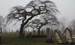 Кладбищенский кросс