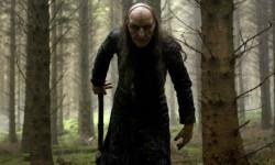 Гадание в лесу