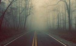 На дороге туман